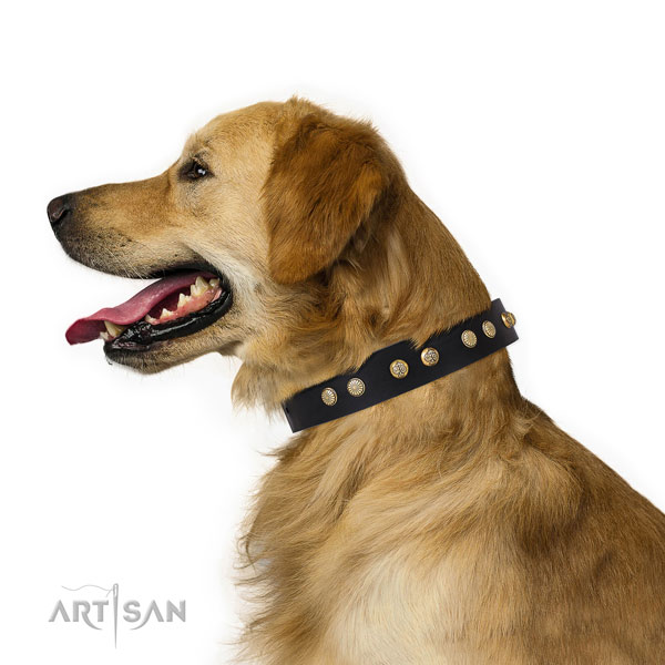 Awesome decorations on easy wearing leather dog collar