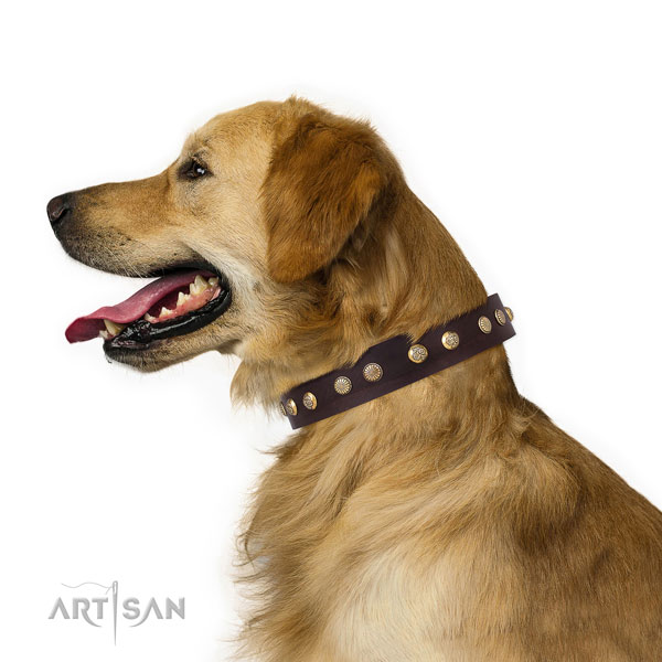 Stunning adornments on handy use genuine leather dog collar