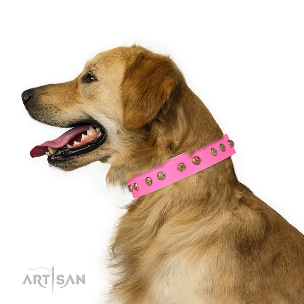 Unusual adornments on comfy wearing leather dog collar