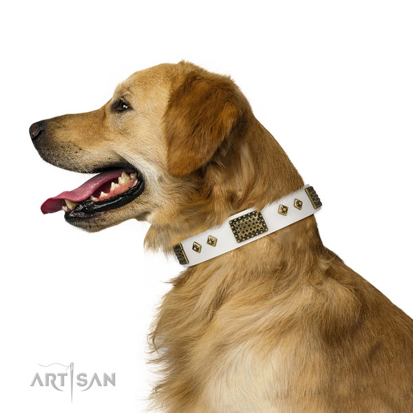Everyday use dog collar of natural leather with awesome embellishments