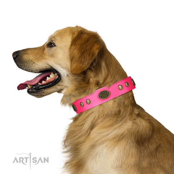 Durable traditional buckle on full grain leather dog collar for daily use