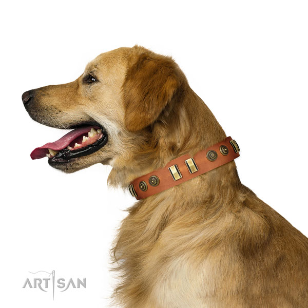 Corrosion resistant fittings on natural leather dog collar for fancy walking