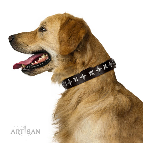 Comfy wearing decorated dog collar of high quality natural leather