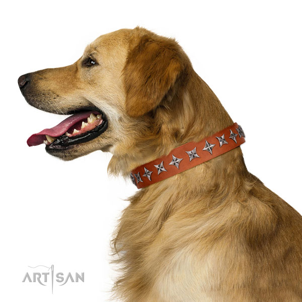 Best quality full grain genuine leather dog collar with significant decorations