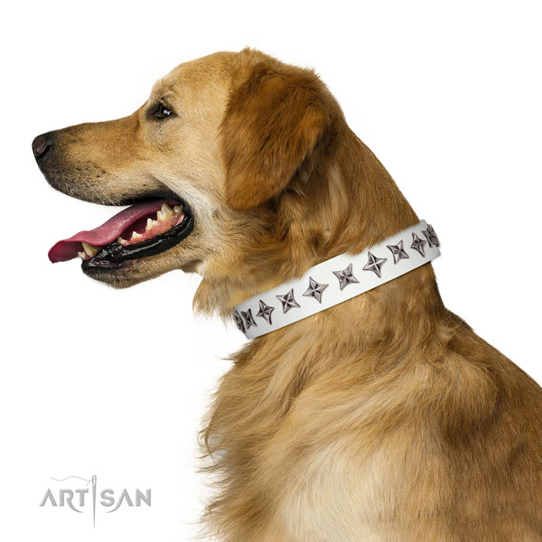 Best quality leather dog collar with exquisite adornments