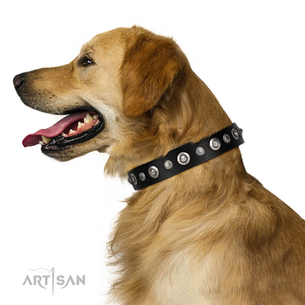 Quality genuine leather dog collar with significant decorations