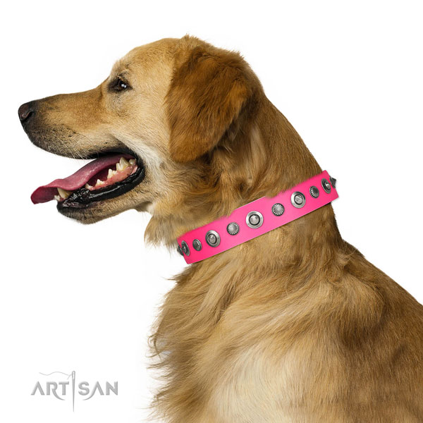 Natural leather collar with corrosion proof buckle for your attractive doggie