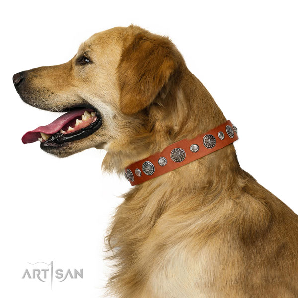 Remarkable Full grain natural leather dog collar with corrosion proof D-ring