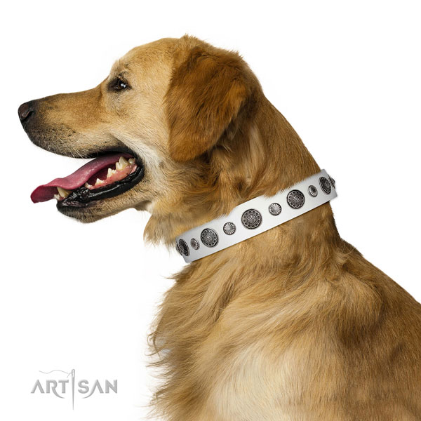 Exceptional genuine leather dog collar with rust resistant buckle