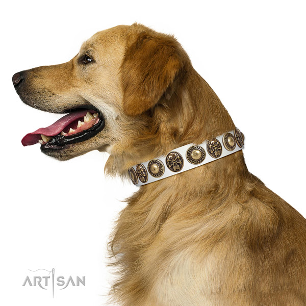 Adjustable genuine leather collar for your beautiful four-legged friend