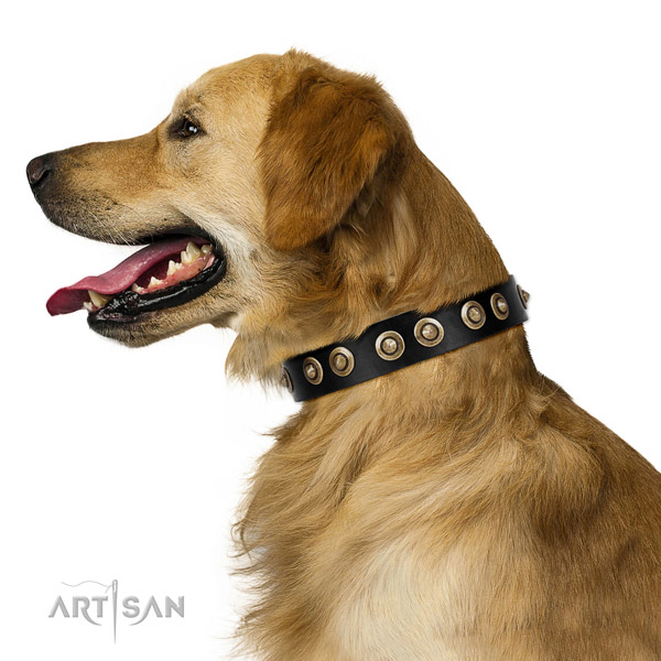 Easy wearing dog collar of natural leather with trendy decorations