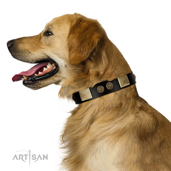Handy use dog collar of leather with inimitable adornments