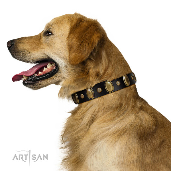 Full grain leather dog collar of soft to touch material with fashionable decorations