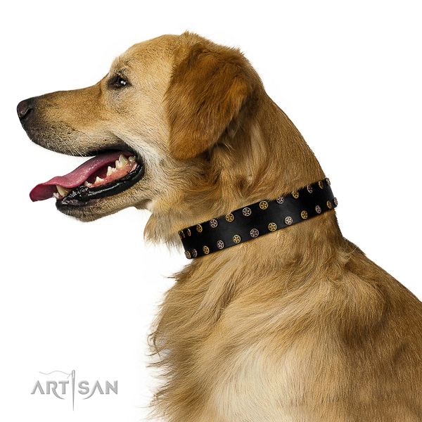 Stunning full grain genuine leather dog collar with corrosion resistant decorations