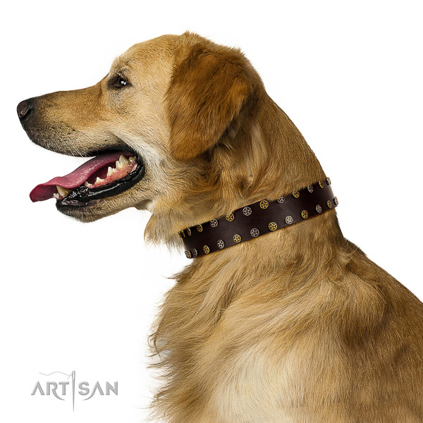 Stylish walking full grain leather dog collar with decorations