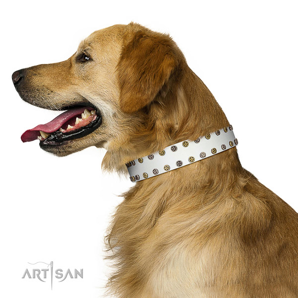 Exceptional full grain genuine leather dog collar with reliable decorations