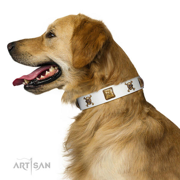 Daily use leather dog collar with adornments