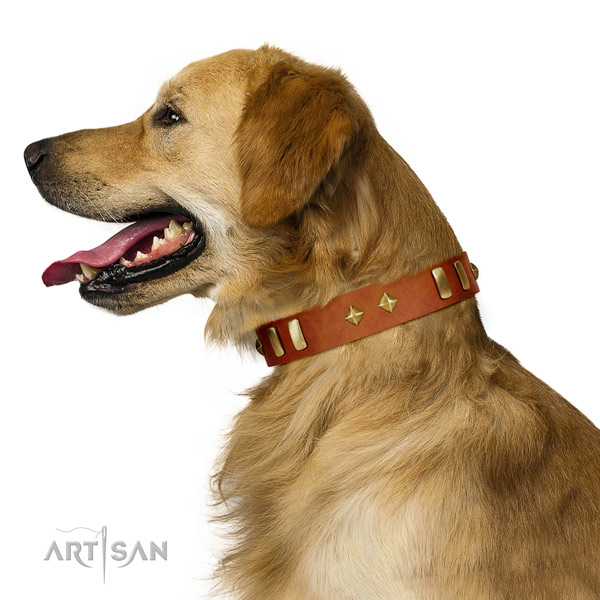 Walking soft full grain natural leather dog collar with adornments