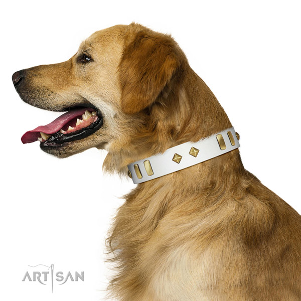 Handy use gentle to touch full grain natural leather dog collar with adornments