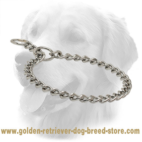 Smooth Chrome Plated Golden Retriever Choke Collar for Dog Training