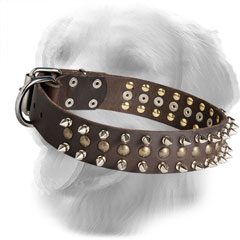 Leather Golden Retriever Collar Decorated with Stylish Half-Ball Studs and Spikes