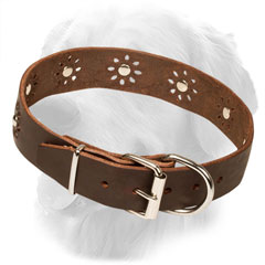 Golden Retriever Collar for Walking in Style
