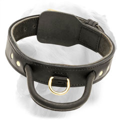 Comfy Leather Golden Retriever Collar with Fur Saving Plate