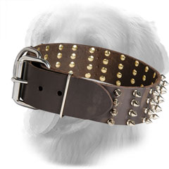 Wide Leather Golden Retriever Collar with Nickel Plated Buckle