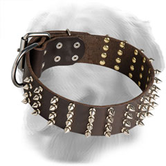 Decorated Golden Retriever Collar with 4 Rows of Nickel Plated Spikes