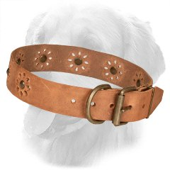Golden Retriever Collar with Strong Buckle and D-Ring