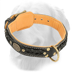 Leather Golden Retriever Collar with Fur Protection Plate