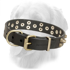 Leather Golden Retriever Collar with Durable Buckle