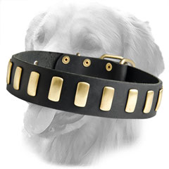Handcrafted Decorated Leather Collar