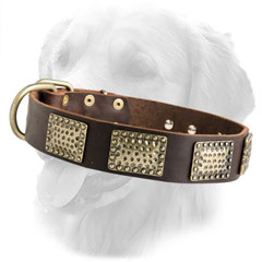 Stylish Design Leather Collar