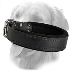 Soft Padding Leather Collar