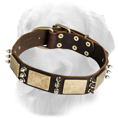 Original Leather Collar with Nickel Spikes