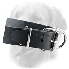 Classic Leather Collar with ID Tag
