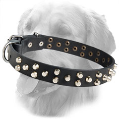 Fashionable Leather Collar