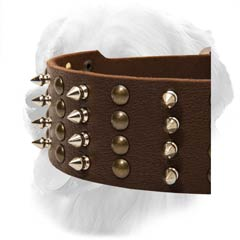 Golden Retriever Decorated Leather Collar