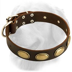 Amazing Leather Collar with Vintage Oval Plates
