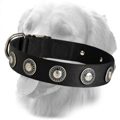 Decorated Nylon Collar