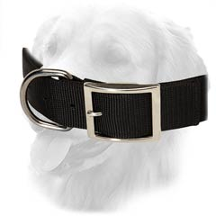 Nylon Collar for Golden Retrievers