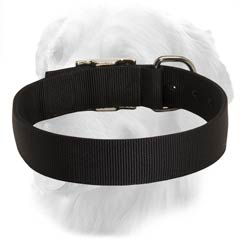 Nylon Collar for Any Weather