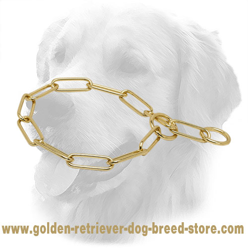 Brass Golden Retriever Collar with Fur Saving Links