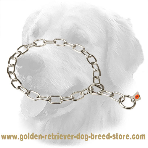 Golden Retriever Fur Saver for Obedience Training