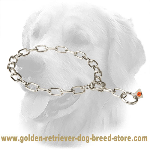 Rust Resistant Stainless Steel Golden Retriever Fur Saver