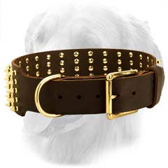 Leather Collar with Brass Buckle