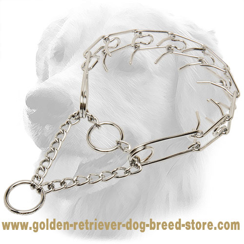 Smooth Chrome Plated Golden Retriever Pinch Collar for Training