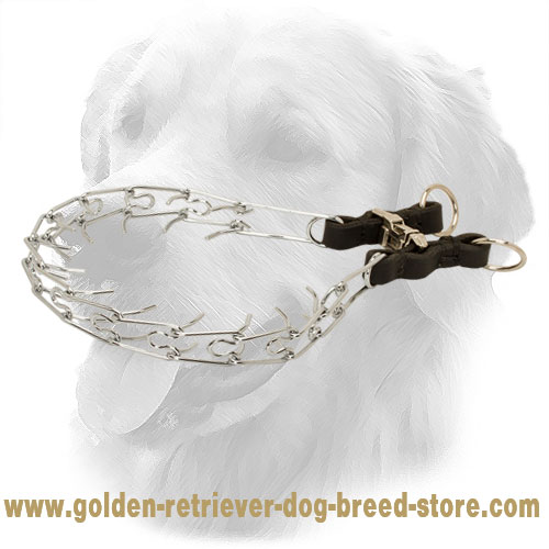 Smooth Chrome Plated Golden Retriever Pinch Collar with Leather Part