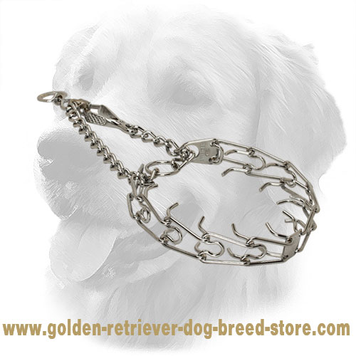 Chrome Plated Golden Retriever Prong Collar for Dog Training